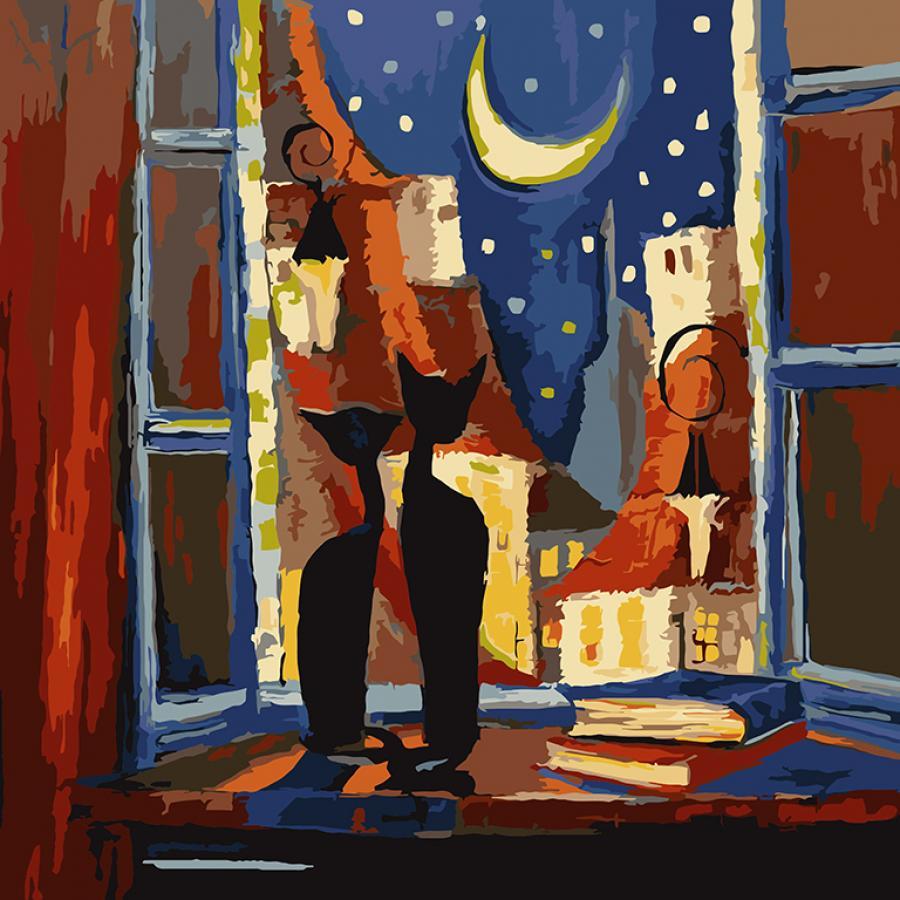 Раскраска по номерам Романтическая ночь (Юстина Копаня ...