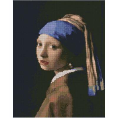Купить АЛМАЗНАЯМОЗАИКА«ДЕВУШКАСЖЕМЧУЖНОЙСЕРЕЖКОЙ»,40Х50СМ,STRATEG(FA0019)